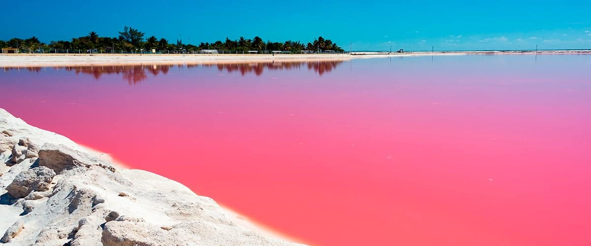 Pinkes Wasser in Las Coloradas Title