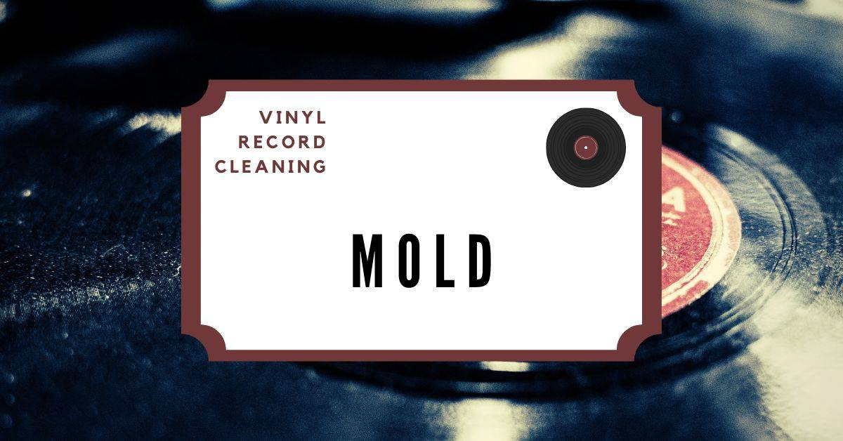 featured mold removal vinyl records