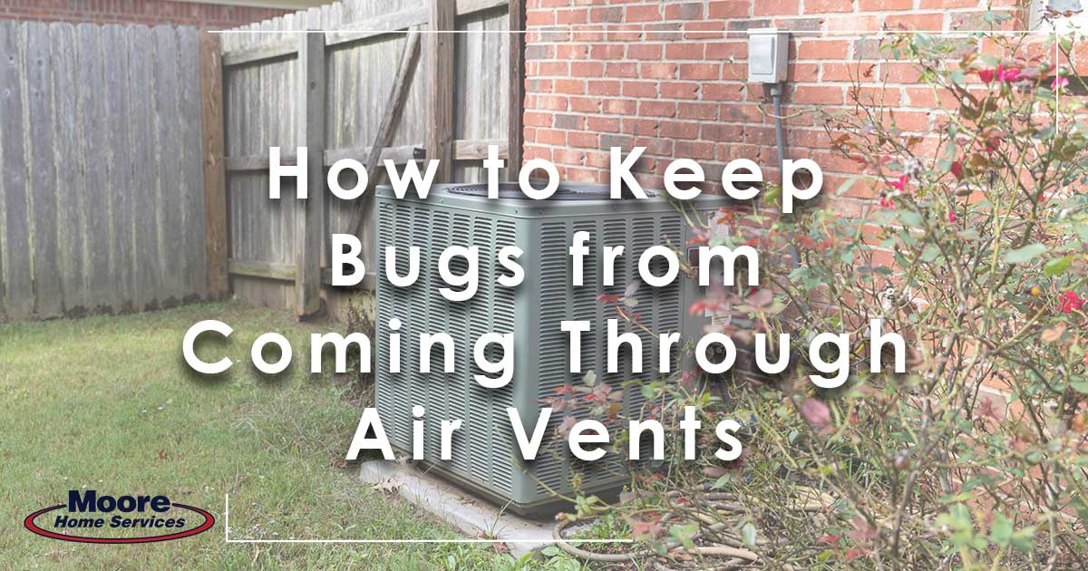How to keep bugs from coming through air vents!