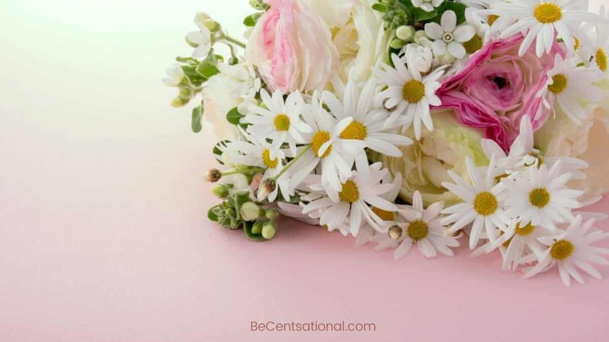 roses and daisy Flower Wallpapers Wallpapers, flower Backgrounds for desktop