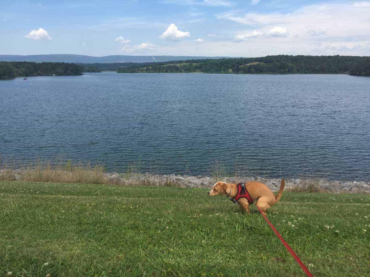 shawnee state park lake hazel