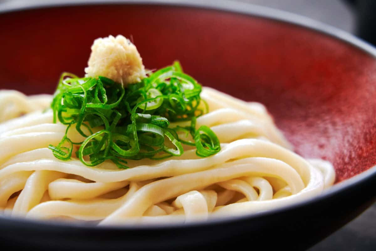 A bowl full of thick Japanese udon noodles made from scratch garnisheed with scallions and ginger.