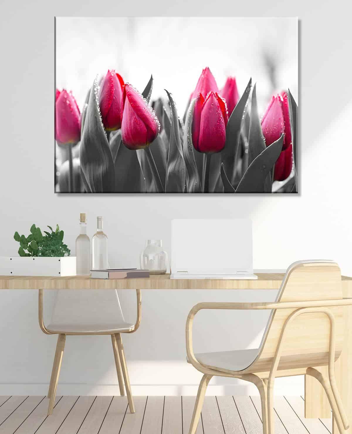 Obrazy do jadalni Tulipany - Kwiaty #165