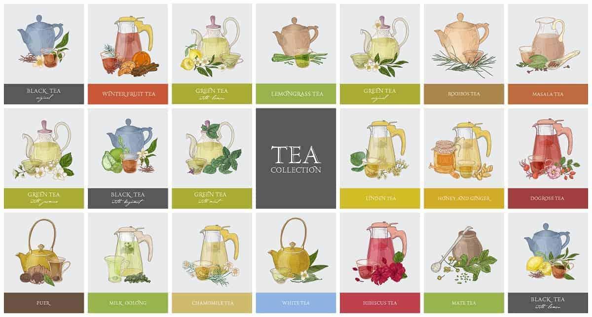 teapot types