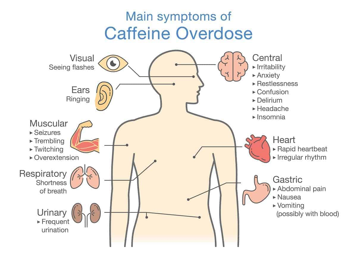 Main symptoms of Caffeine Overdose. Illustration about health check up diagram