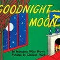 goodnight moon, travel goodnight moon, baby travel gear