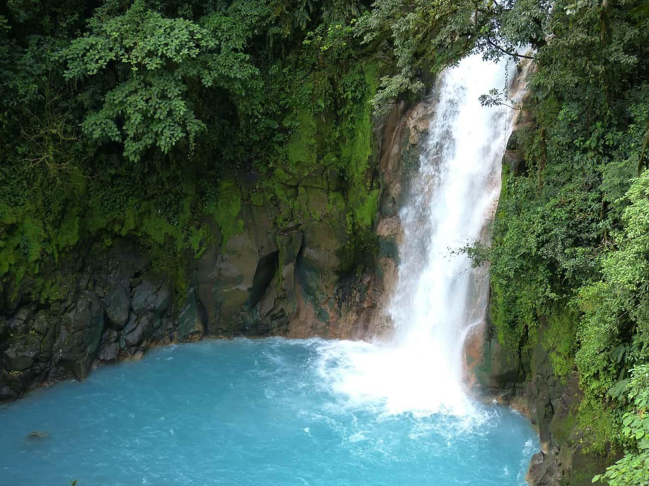 Kokosnuss Insel ein Teuerer Spaß für einen Ausflug in das Paradies