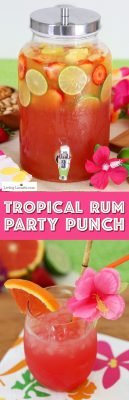 Tropical Rum Punch Recipe - Luau Party Drink