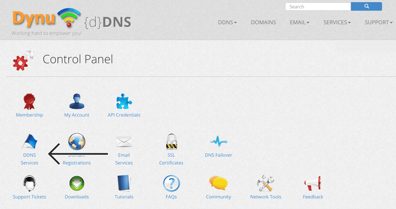 """Select """"DDNS Services."""""""