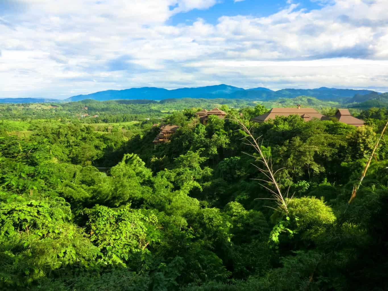 Dschungel bei Chang Rai