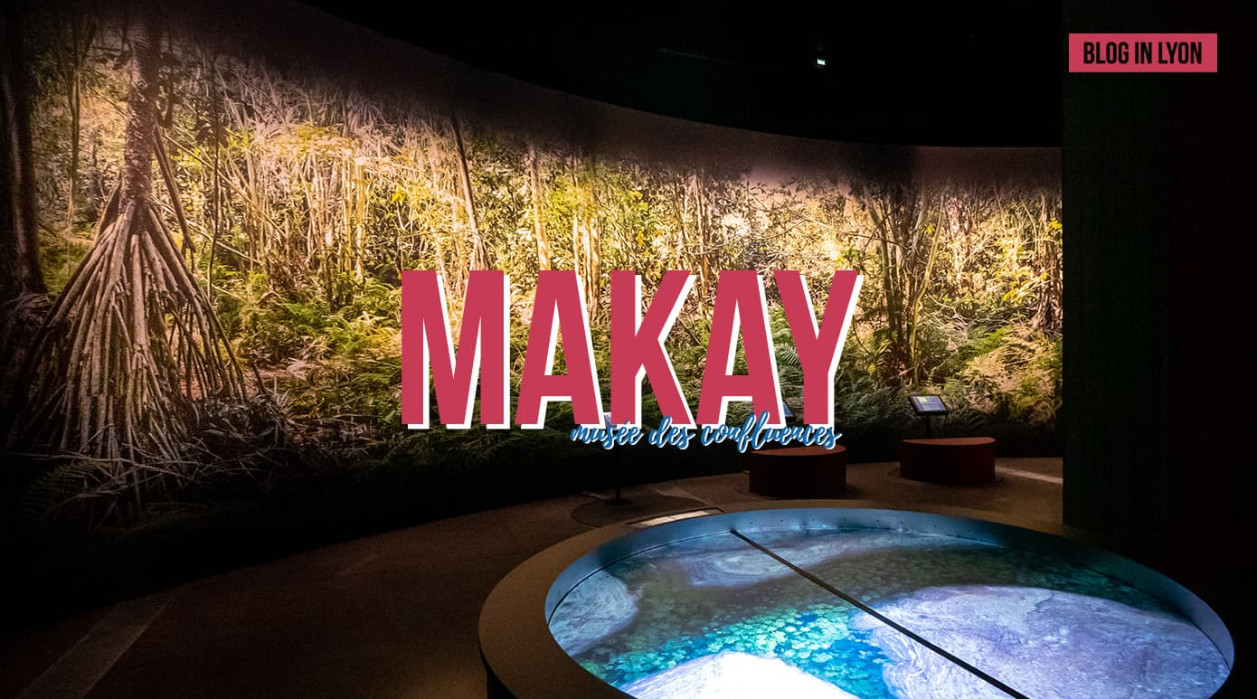 Exposition Makay - Musée des Confluences | Blog In Lyon