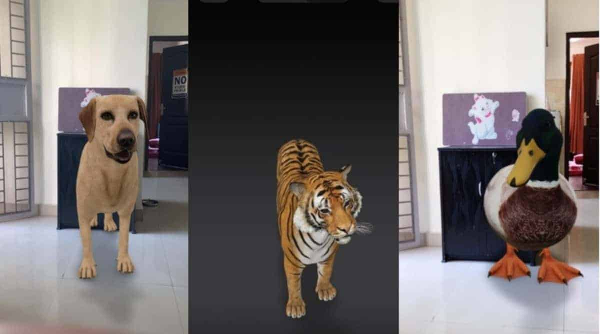 3D animals are already on Google and could be in your living room!