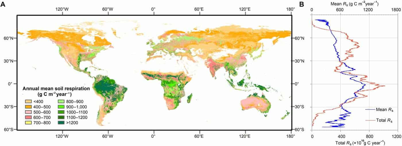 Map of the global distribution of mean annual soil respiration (Rs) between 2000 and 2014. Figure: Huang et al., 2020.