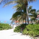 castaway cay, castaway cay bahamas, way to beach, baby friendly disney, castaway cay with babies, castaway cay with toddlers