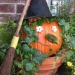 Halloween Witch Pumpkin   Easy Craft Idea   Living Locurto
