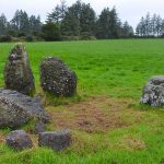 Another view of the Knockboy Stone Row - The Irish Place