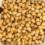 Coriander-Seeds-साबुत-धनिया-Sabut-Dhania-indian-spices-names-hindi-english-Meri-Rasoi