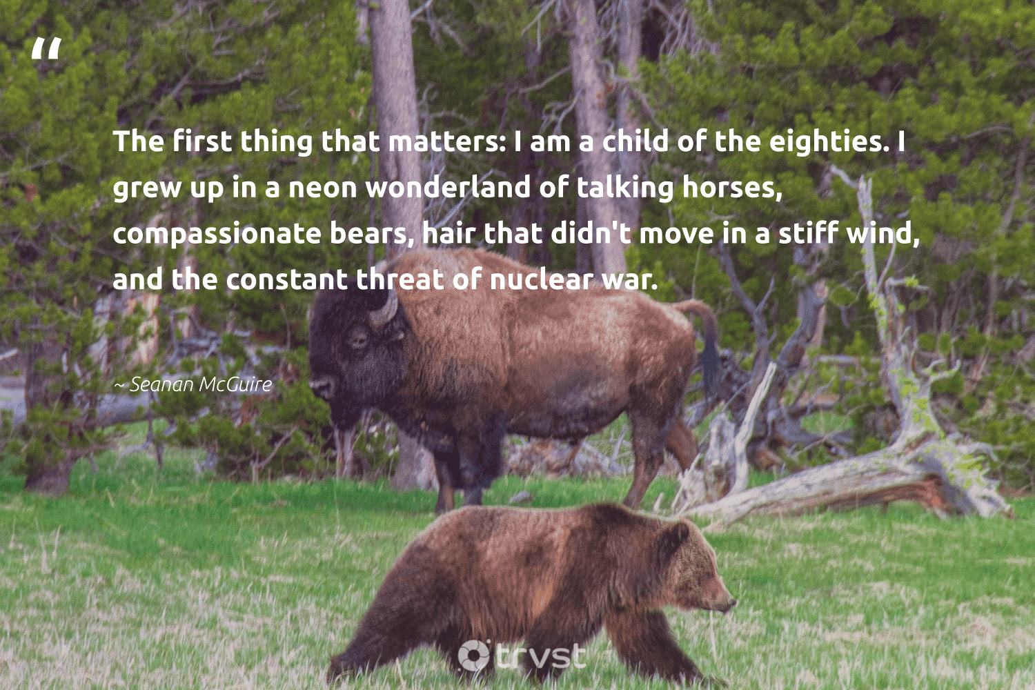 """""""The first thing that matters: I am a child of the eighties. I grew up in a neon wonderland of talking horses, compassionate bears, hair that didn't move in a stiff wind, and the constant threat of nuclear war.""""  - Seanan McGuire #trvst #quotes #bears #ourplanetdaily #dotherightthing #wild #collectiveaction #bear #socialimpact #sustainability #bethechange #bearlove"""