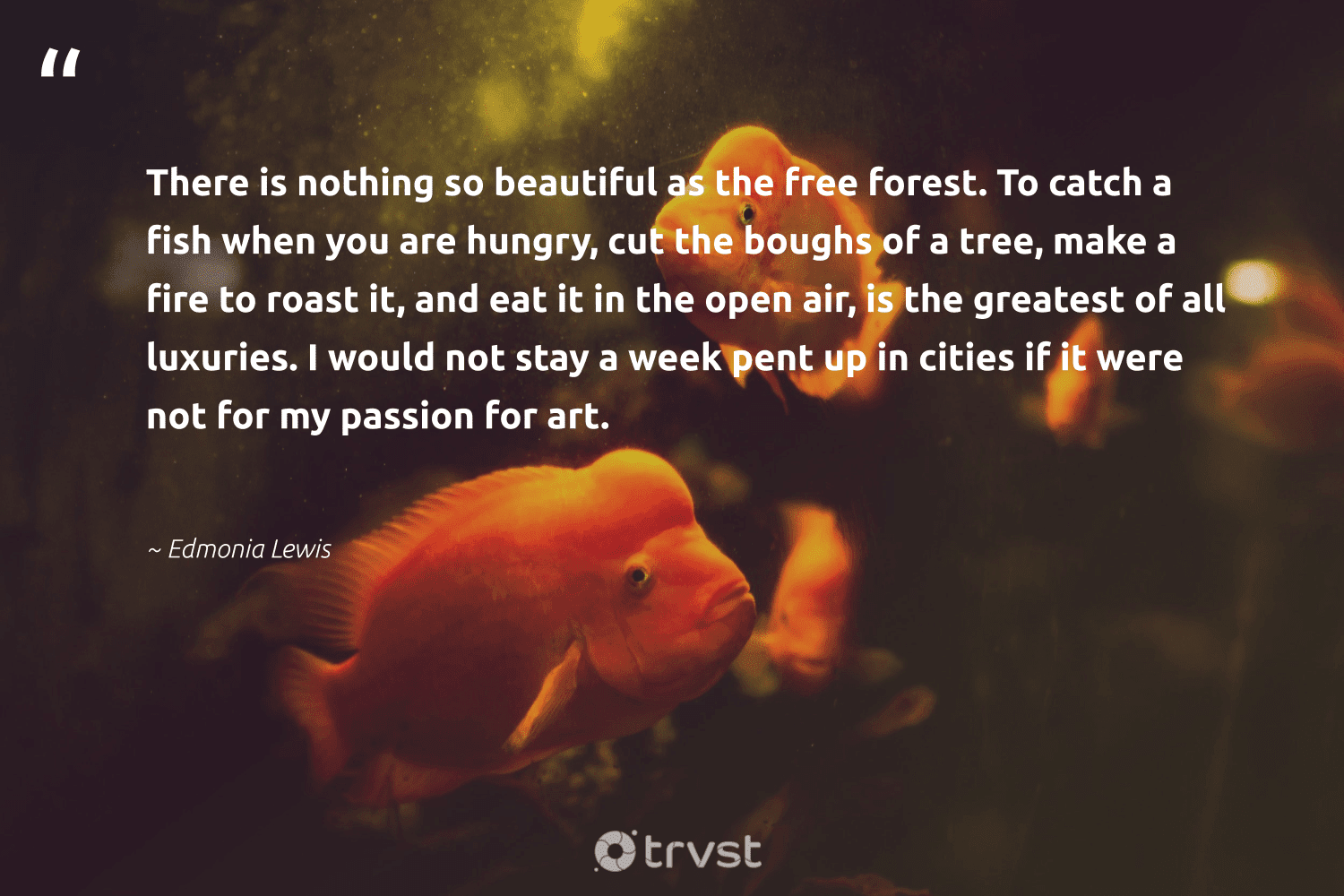 """""""There is nothing so beautiful as the free forest. To catch a fish when you are hungry, cut the boughs of a tree, make a fire to roast it, and eat it in the open air, is the greatest of all luxuries. I would not stay a week pent up in cities if it were not for my passion for art.""""  - Edmonia Lewis #trvst #quotes #forest #fish #hungry #passion #amazonforest #marinelife #earth #impact #plantatree #oceans"""