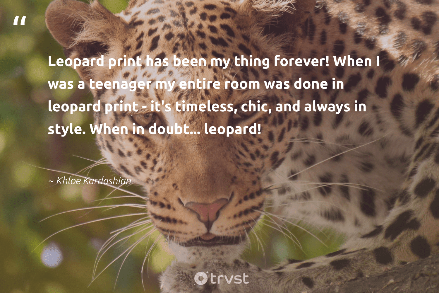 """""""Leopard print has been my thing forever! When I was a teenager my entire room was done in leopard print - it's timeless, chic, and always in style. When in doubt... leopard!""""  - Khloe Kardashian #trvst #quotes #leopard #wild #socialchange #protectnature #takeaction #biodiversity #bethechange #perfectnature #impact #bigcats"""