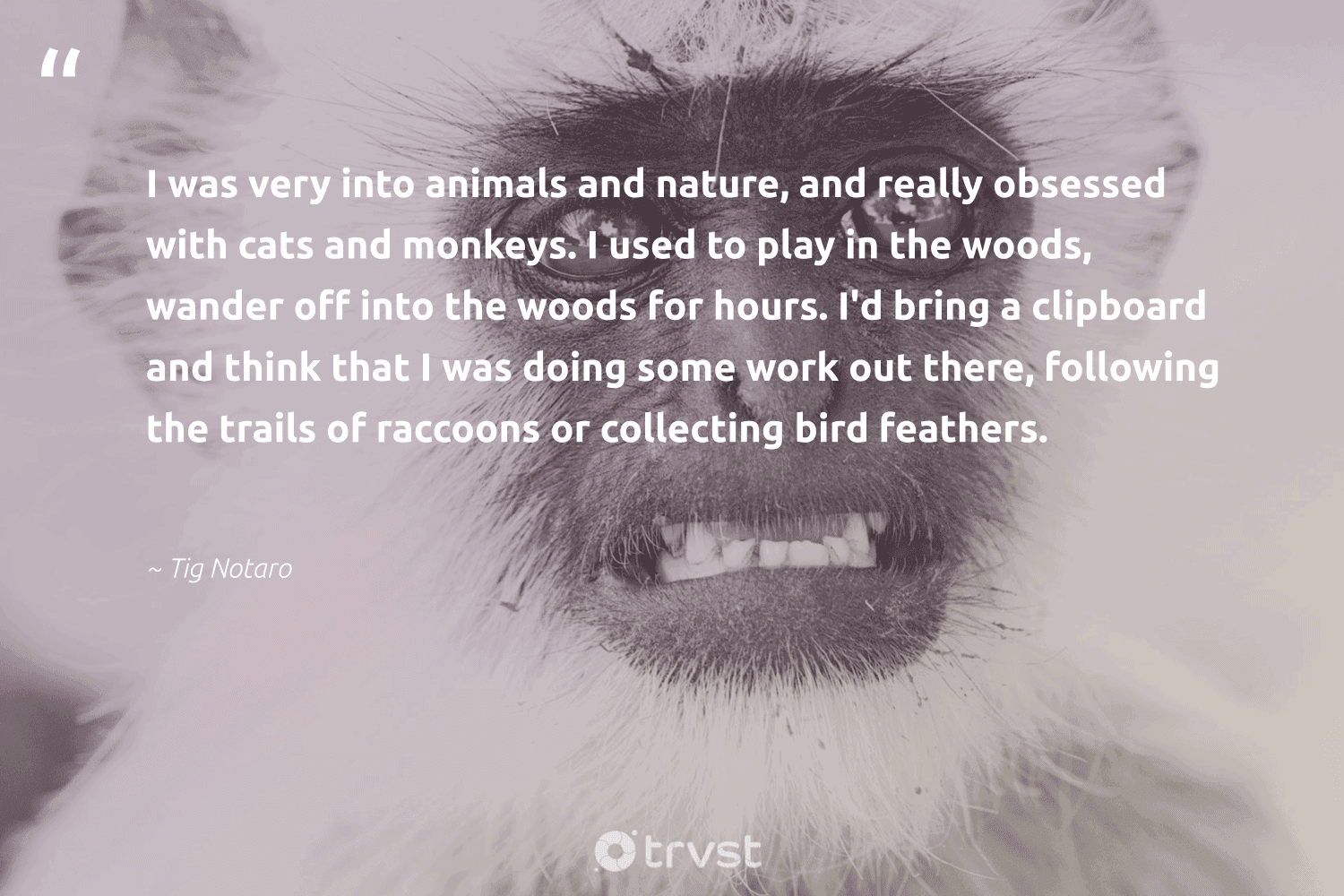 """""""I was very into animals and nature, and really obsessed with cats and monkeys. I used to play in the woods, wander off into the woods for hours. I'd bring a clipboard and think that I was doing some work out there, following the trails of raccoons or collecting bird feathers.""""  - Tig Notaro #trvst #quotes #nature #bird #animals #feathers #monkeys #environment #amazingworld #sustainability #socialchange #planet"""