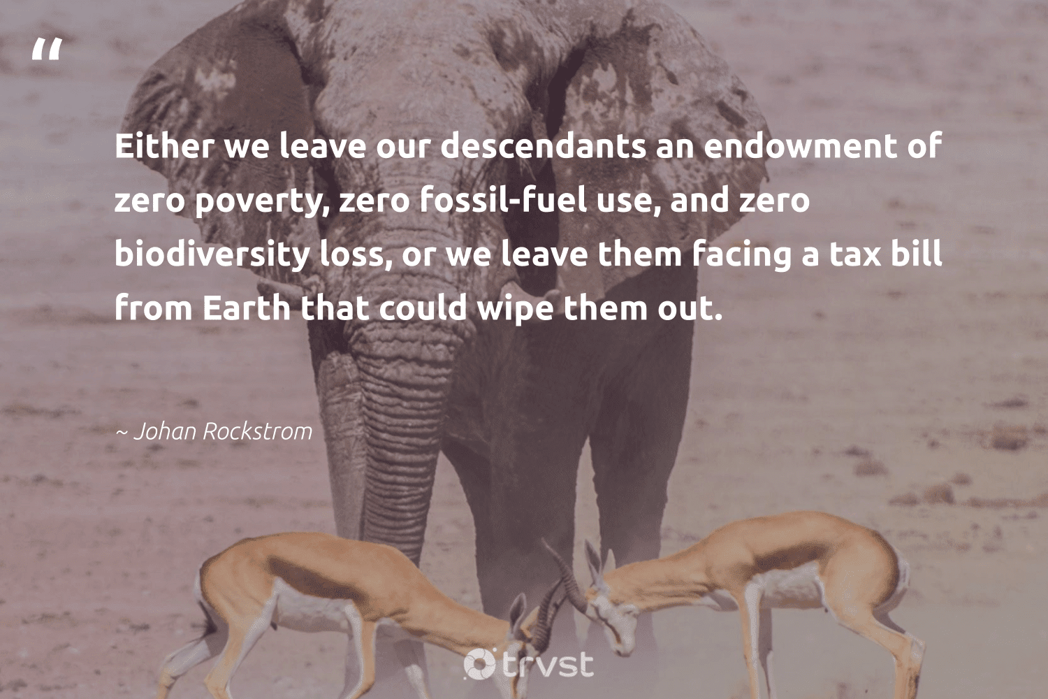 """""""Either we leave our descendants an endowment of zero poverty, zero fossil-fuel use, and zero biodiversity loss, or we leave them facing a tax bill from Earth that could wipe them out.""""  - Johan Rockstrom #trvst #quotes #earth #fossil #biodiversity #poverty #nature #biology #wildlifeplanet #dogood #planet #science"""