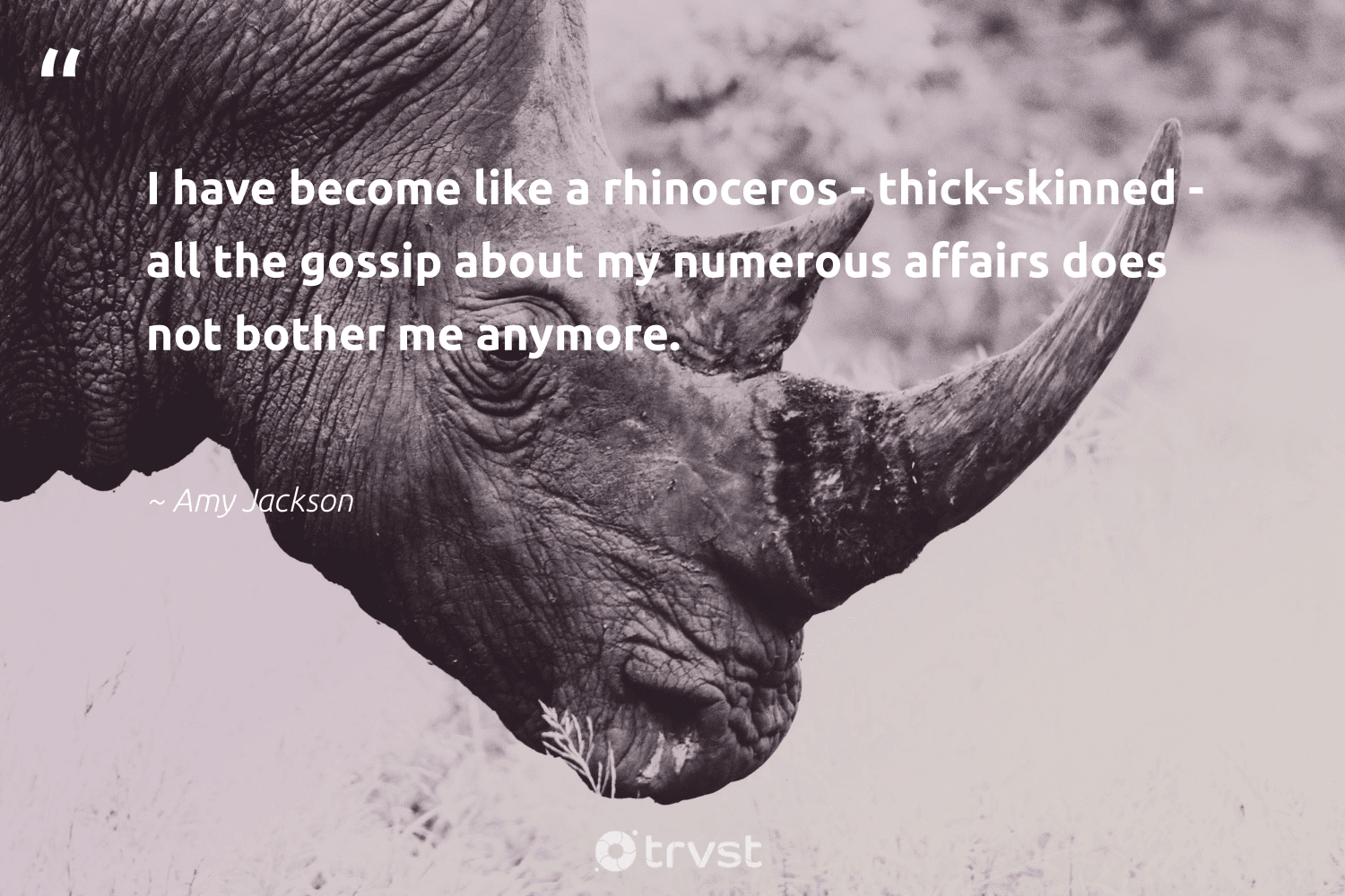 """""""I have become like a rhinoceros - thick-skinned - all the gossip about my numerous affairs does not bother me anymore.""""  - Amy Jackson #trvst #quotes #rhinoceros #wildlifeprotection #beinspired #protectnature #socialimpact #bigfive #impact #ourplanetdaily #collectiveaction #splendidanimals"""