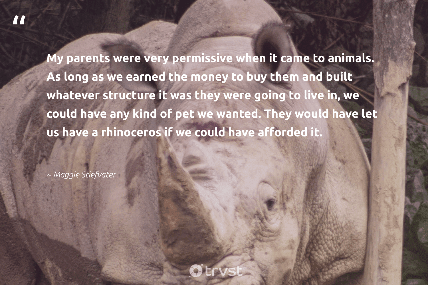 """""""My parents were very permissive when it came to animals. As long as we earned the money to buy them and built whatever structure it was they were going to live in, we could have any kind of pet we wanted. They would have let us have a rhinoceros if we could have afforded it.""""  - Maggie Stiefvater #trvst #quotes #animals #rhinoceros #animal #bigfive #geology #collectiveaction #wildlife #sustainability #natural #thinkgreen"""