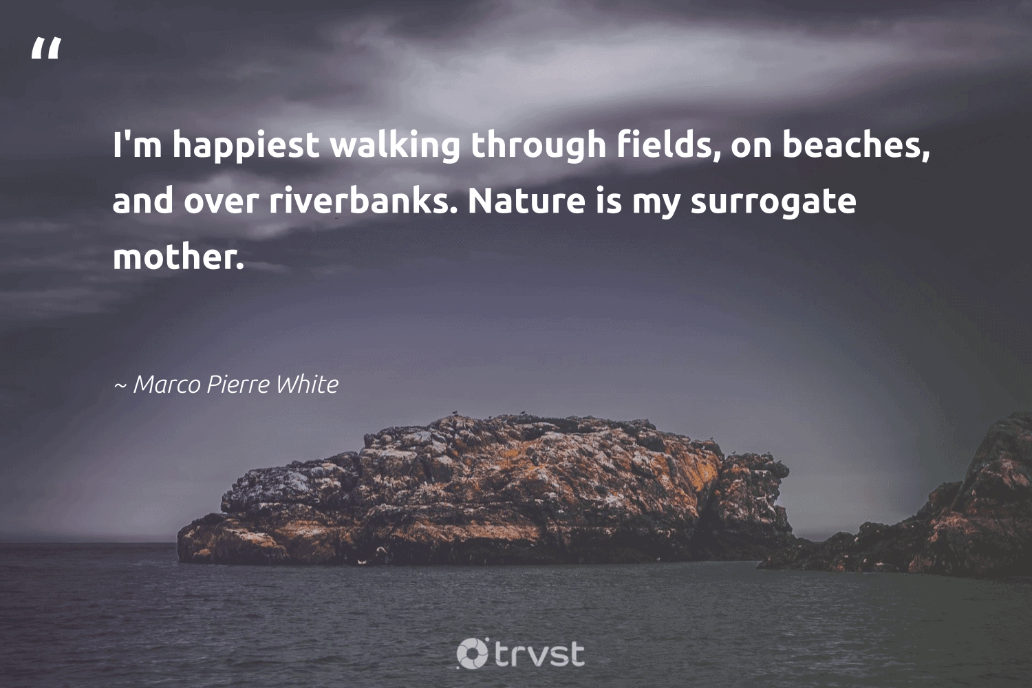 """""""I'm happiest walking through fields, on beaches, and over riverbanks. Nature is my surrogate mother.""""  - Marco Pierre White #trvst #quotes #environment #nature #wildlifeplanet #gogreen #socialchange #conservation #giveback #noplanetb #changetheworld #earth"""