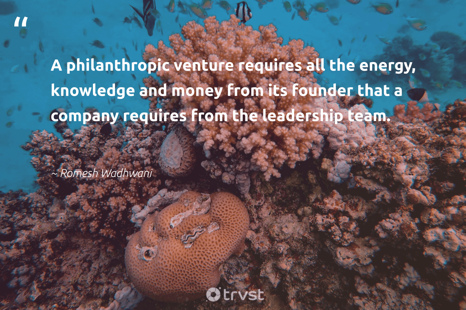 """""""A philanthropic venture requires all the energy, knowledge and money from its founder that a company requires from the leadership team.""""  - Romesh Wadhwani #trvst #quotes #energy #leadership #philanthropic #leadershipskills #togetherwecan #nevergiveup #planetearthfirst #leadershipdevelopment #itscooltobekind #futureofwork"""