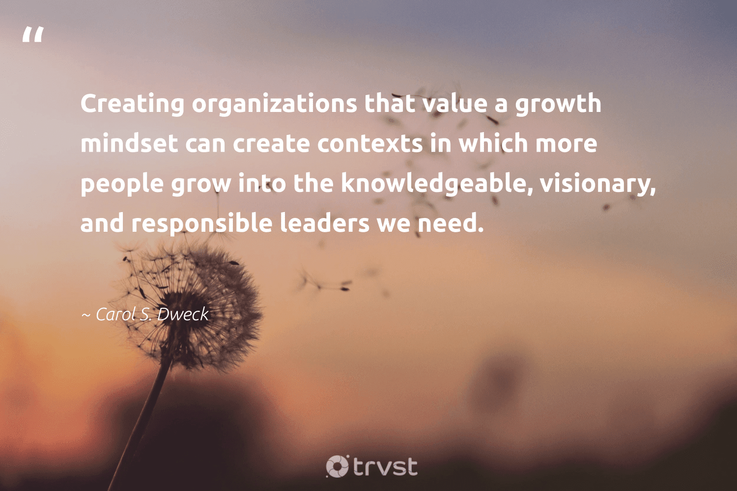 """""""Creating organizations that value a growth mindset can create contexts in which more people grow into the knowledgeable, visionary, and responsible leaders we need.""""  - Carol S. Dweck #trvst #quotes #mindset #growthmindset #goals #motivation #nevergiveup #begreat #takeaction #mindful #meditate #changemakers"""