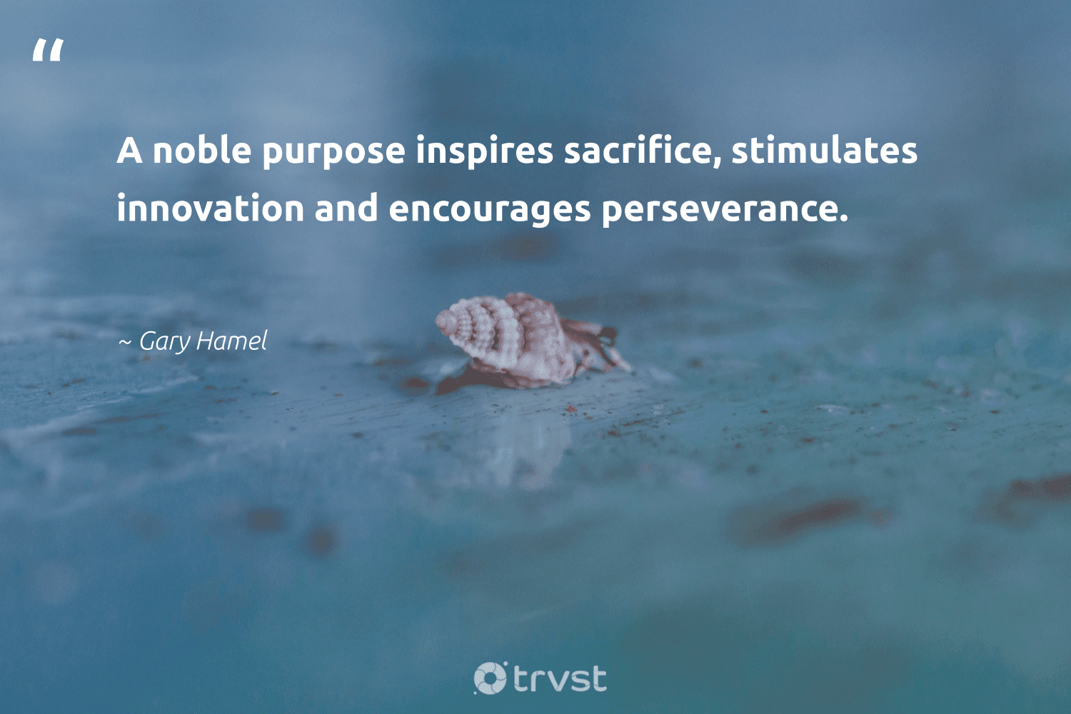 """""""A noble purpose inspires sacrifice, stimulates innovation and encourages perseverance.""""  - Gary Hamel #trvst #quotes #purpose #findingpupose #mindset #nevergiveup #socialchange #purposedriven #begreat #changemakers #collectiveaction #findpurpose"""