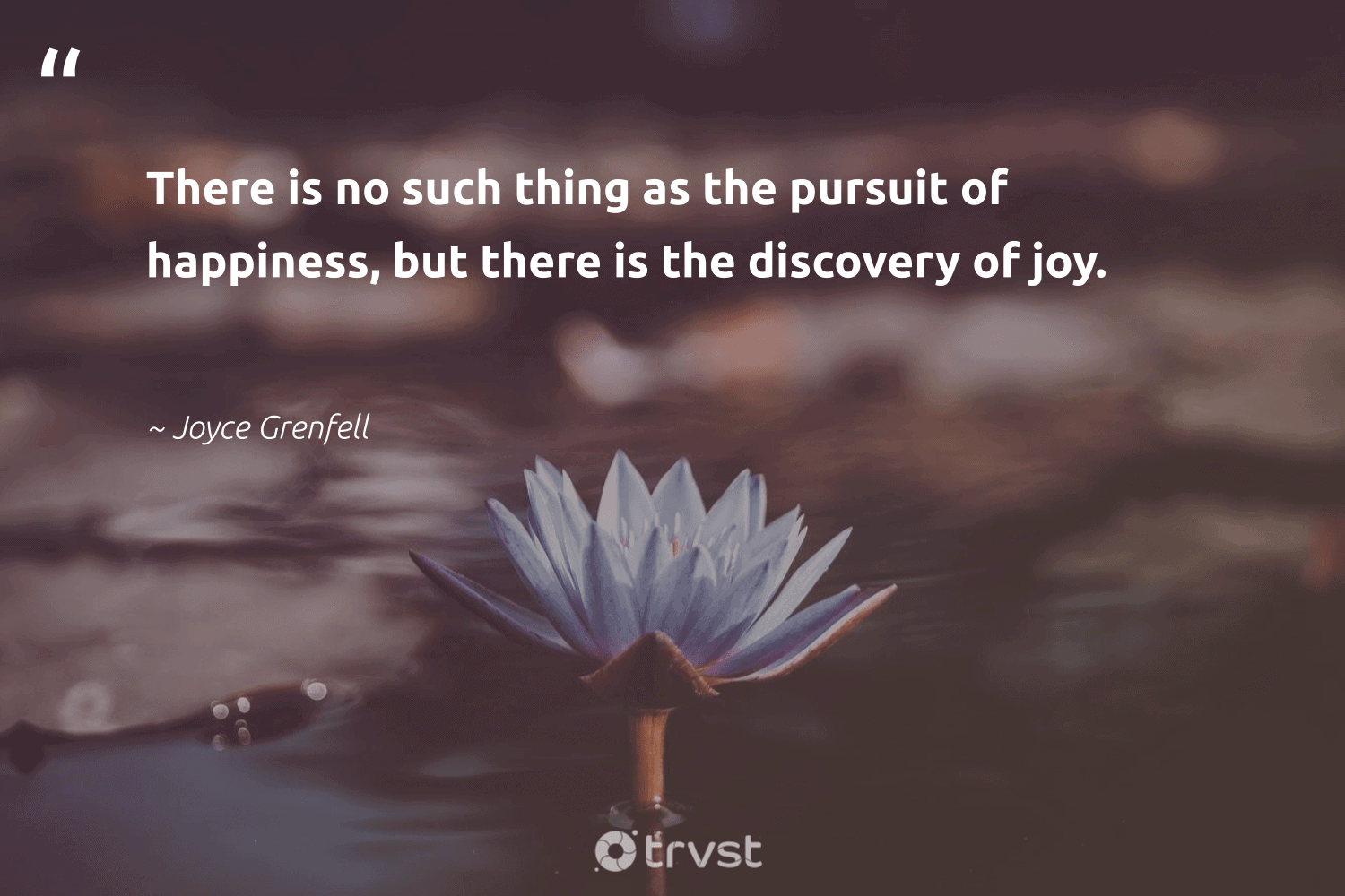 """""""There is no such thing as the pursuit of happiness, but there is the discovery of joy.""""  - Joyce Grenfell #trvst #quotes #happiness #begreat #changetheworld #nevergiveup #impact #mindset #takeaction #togetherwecan #socialchange #health"""