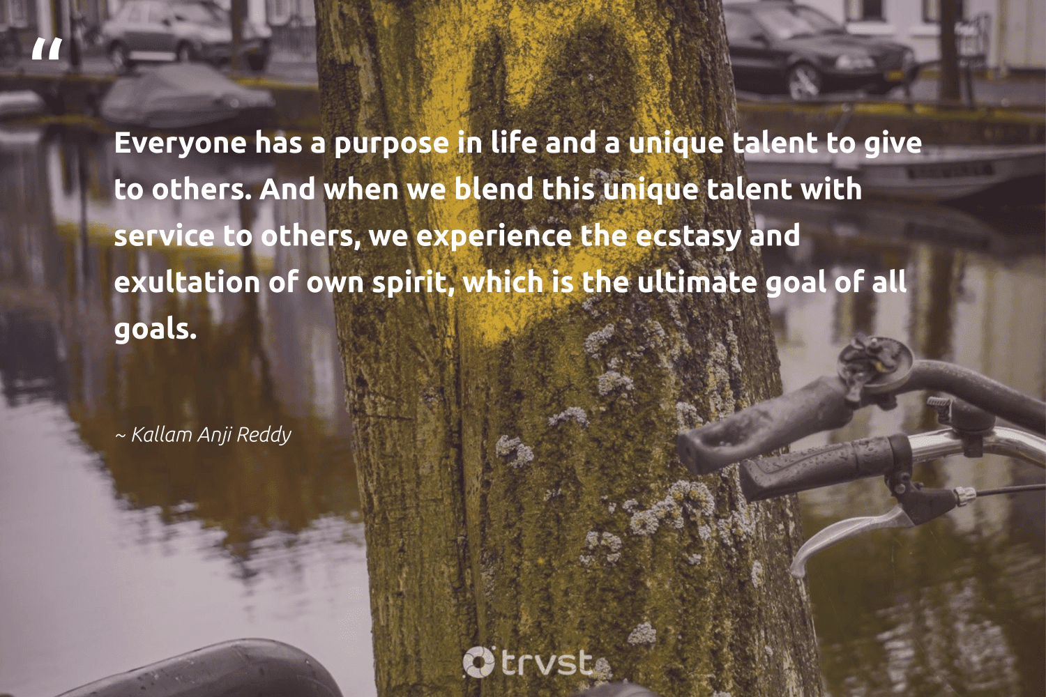"""""""Everyone has a purpose in life and a unique talent to give to others. And when we blend this unique talent with service to others, we experience the ecstasy and exultation of own spirit, which is the ultimate goal of all goals.""""  - Kallam Anji Reddy #trvst #quotes #mindset #goals #purpose #talent #entrepreneurmindset #begreat #togetherwecan #takeaction #positivity #nevergiveup"""