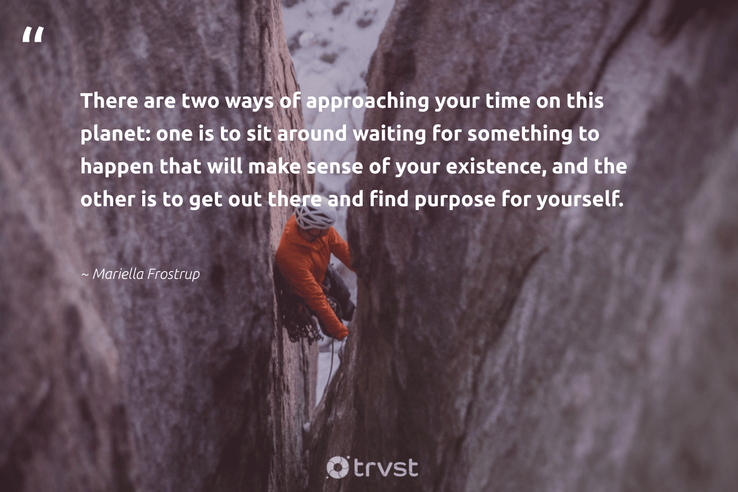 """""""There are two ways of approaching your time on this planet: one is to sit around waiting for something to happen that will make sense of your existence, and the other is to get out there and find purpose for yourself.""""  - Mariella Frostrup #trvst #quotes #purpose #findpurpose #purposedriven #findingpupose #nevergiveup #togetherwecan #collectiveaction #health #begreat #beinspired"""