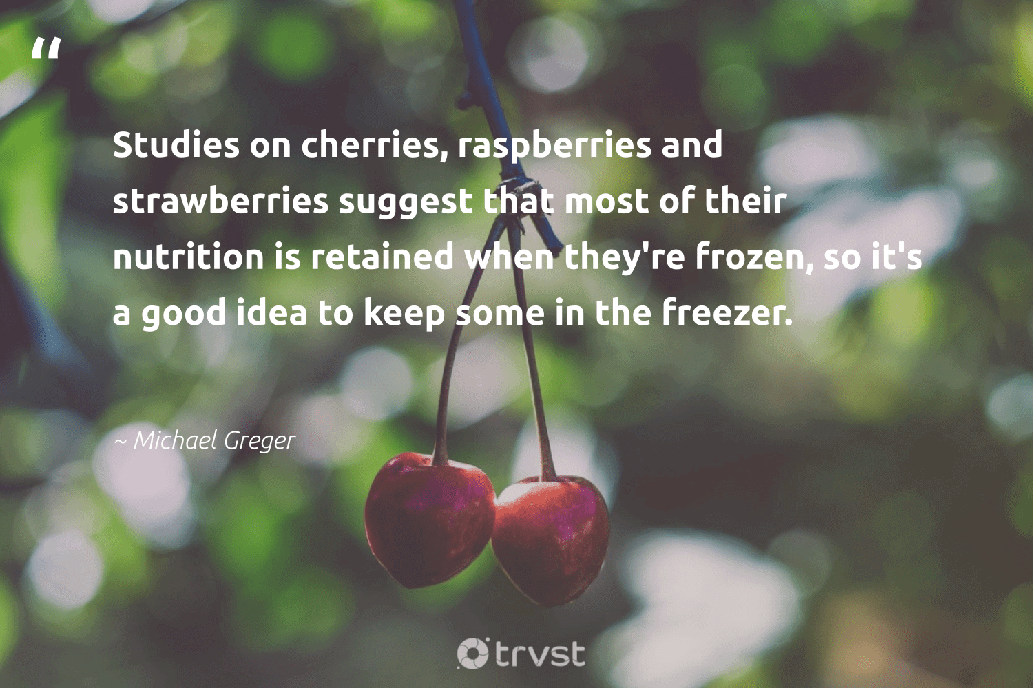 """""""Studies on cherries, raspberries and strawberries suggest that most of their nutrition is retained when they're frozen, so it's a good idea to keep some in the freezer.""""  - Michael Greger #trvst #quotes #eatclean #nutrition #health #togetherwecan #dogood #healthyeating #nevergiveup #begreat #dosomething #balance"""