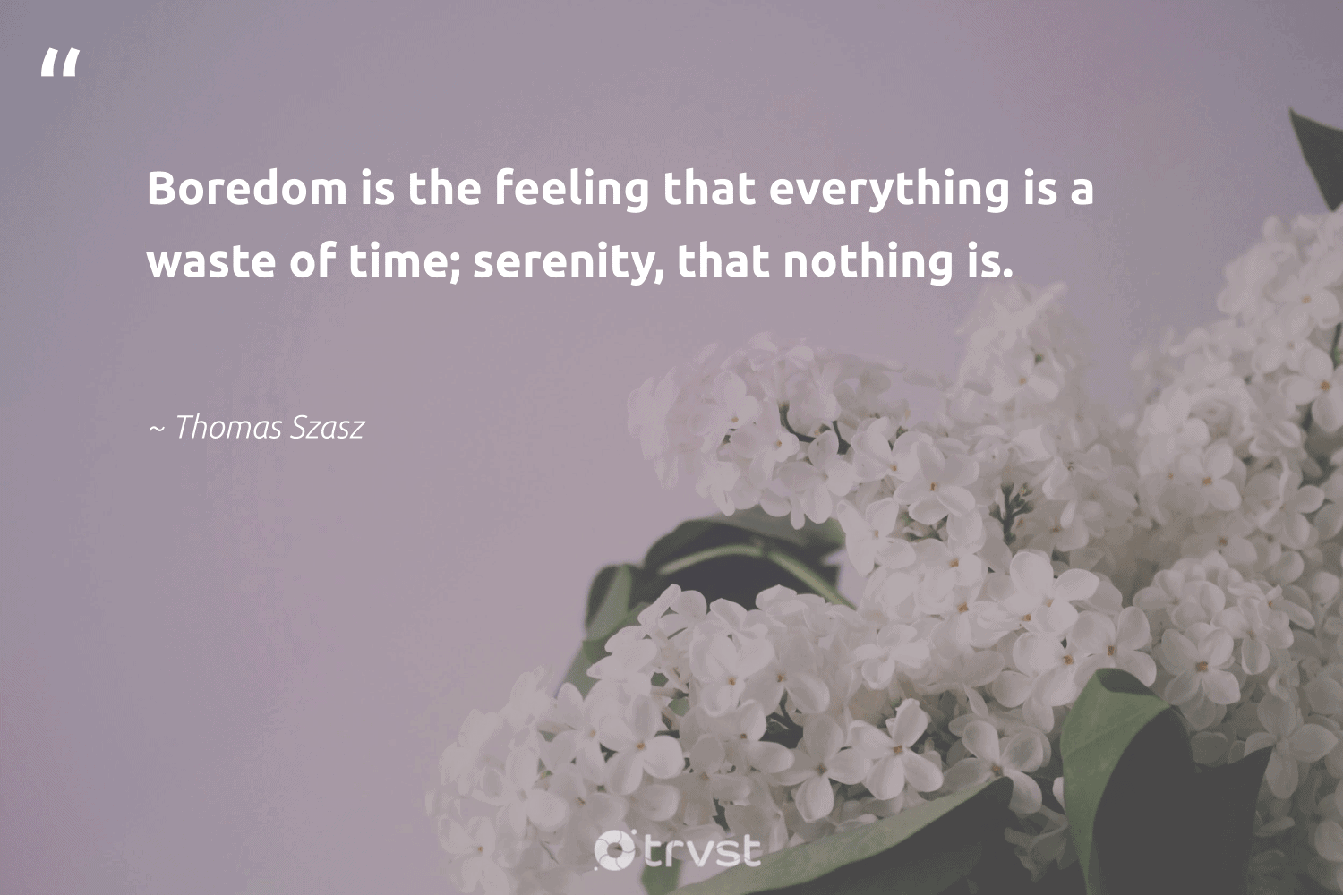 """""""Boredom is the feeling that everything is a waste of time; serenity, that nothing is.""""  - Thomas Szasz #trvst #quotes #waste #begreat #impact #mindset #dosomething #nevergiveup #socialimpact #togetherwecan #dotherightthing #changemakers"""