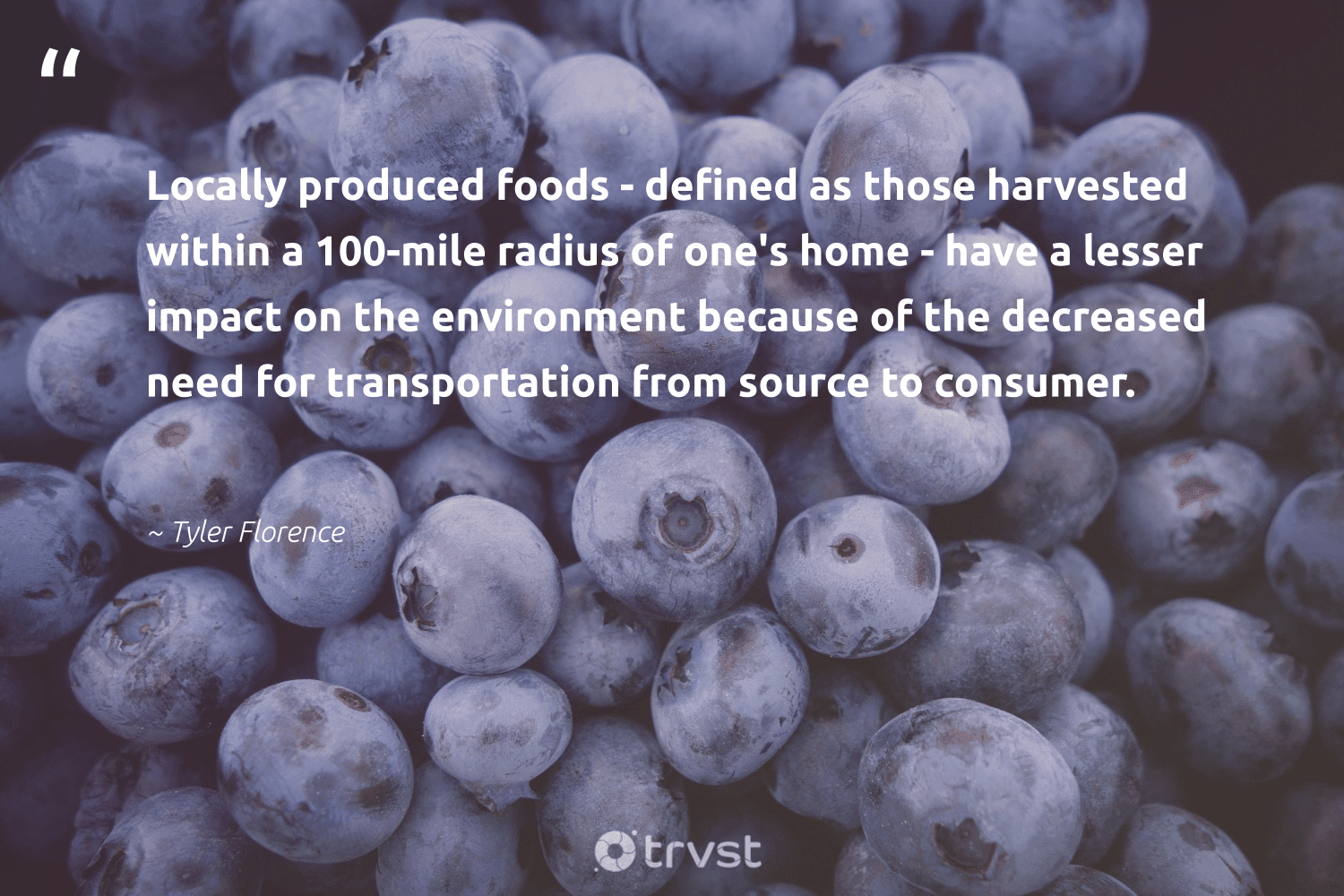 """""""Locally produced foods - defined as those harvested within a 100-mile radius of one's home - have a lesser impact on the environment because of the decreased need for transportation from source to consumer.""""  - Tyler Florence #trvst #quotes #impact #environment #nature #nevergiveup #naturelovers #thinkgreen #conservation #health #natureseekers #socialchange"""