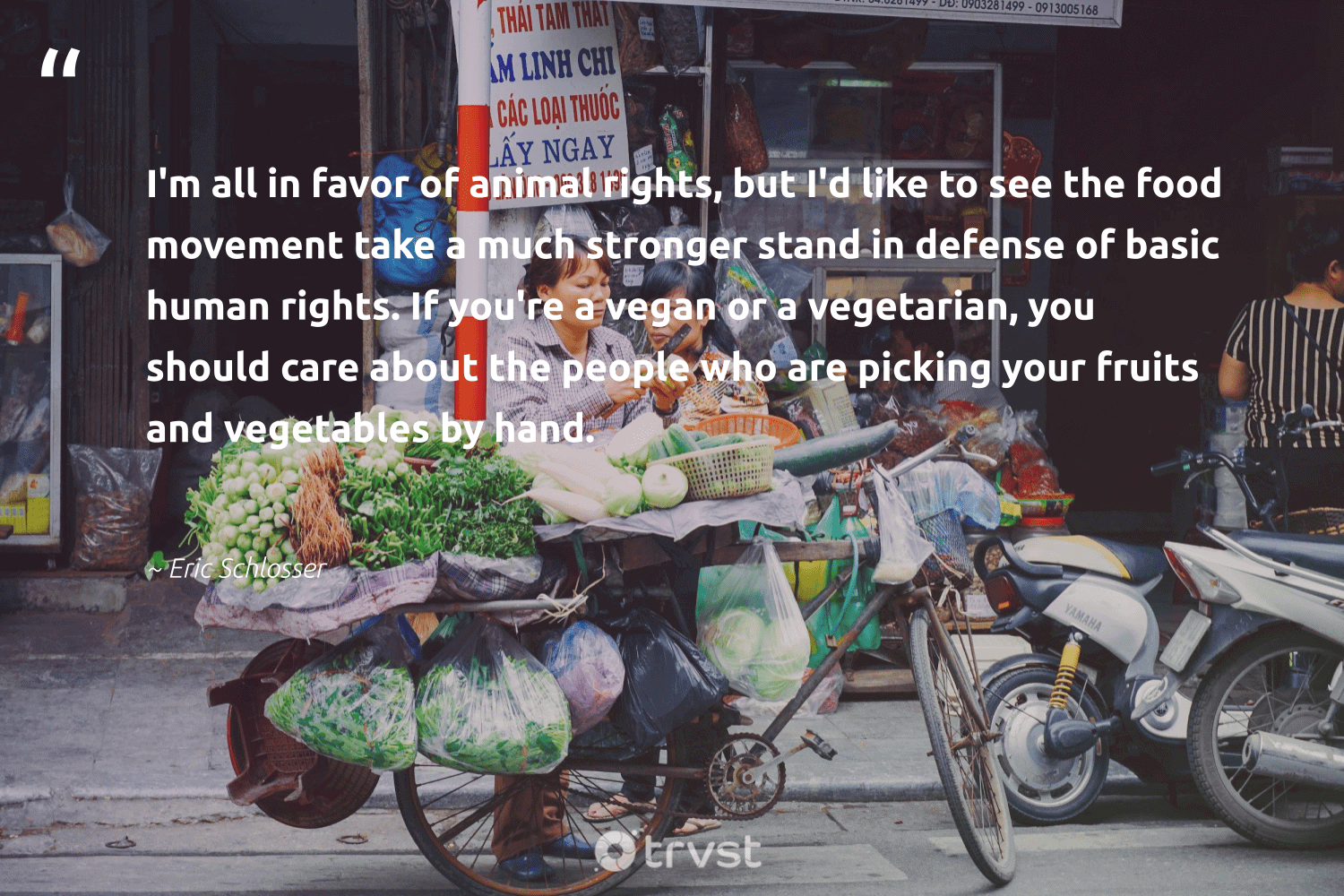 """""""I'm all in favor of animal rights, but I'd like to see the food movement take a much stronger stand in defense of basic human rights. If you're a vegan or a vegetarian, you should care about the people who are picking your fruits and vegetables by hand.""""  - Eric Schlosser #trvst #quotes #vegan #animal #humanrights #food #vegetarian #whatveganseat #animallovers #green #greenliving #collectiveaction"""