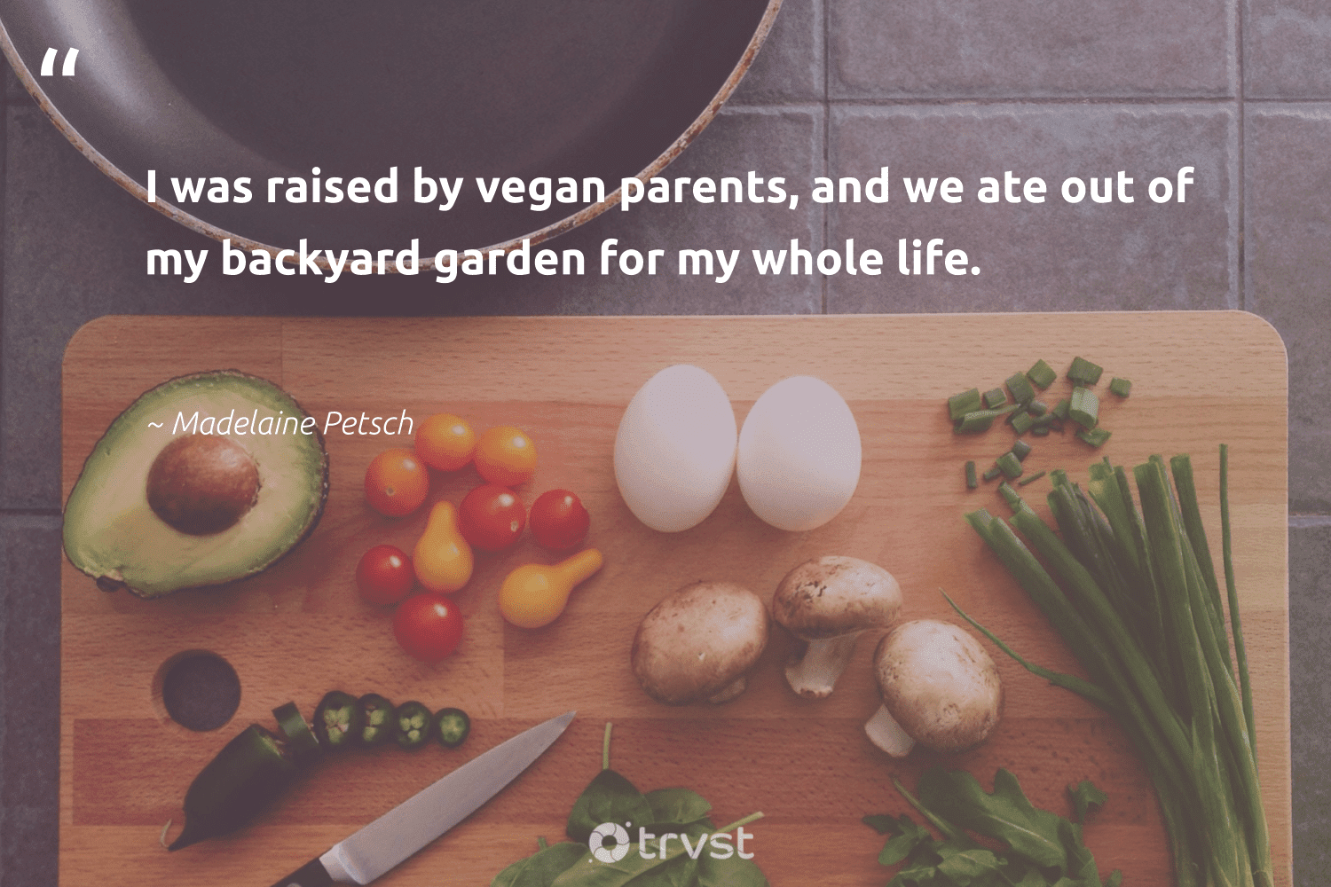 """""""I was raised by vegan parents, and we ate out of my backyard garden for my whole life.""""  - Madelaine Petsch #trvst #quotes #vegan #whatveganseat #sustainable #bethechange #takeaction #veganfood #greenliving #sustainability #thinkgreen #vegetarian"""
