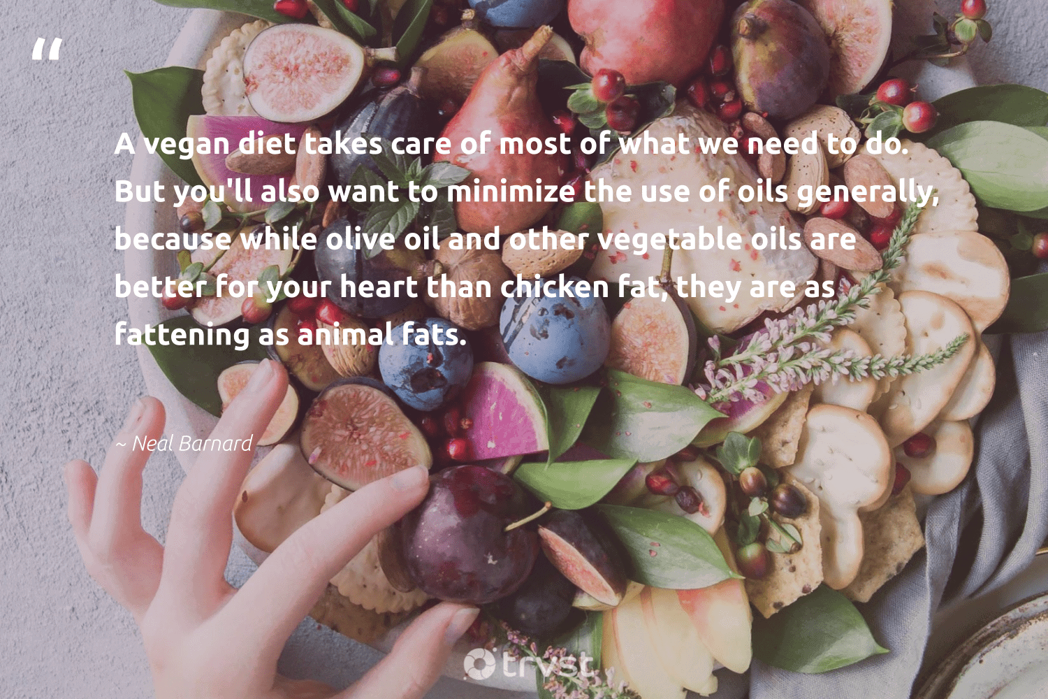 """""""A vegan diet takes care of most of what we need to do. But you'll also want to minimize the use of oils generally, because while olive oil and other vegetable oils are better for your heart than chicken fat, they are as fattening as animal fats.""""  - Neal Barnard #trvst #quotes #oil #animal #vegan #coal #green #climateaction #takeaction #fossilfuels #sustainability #planetearth"""