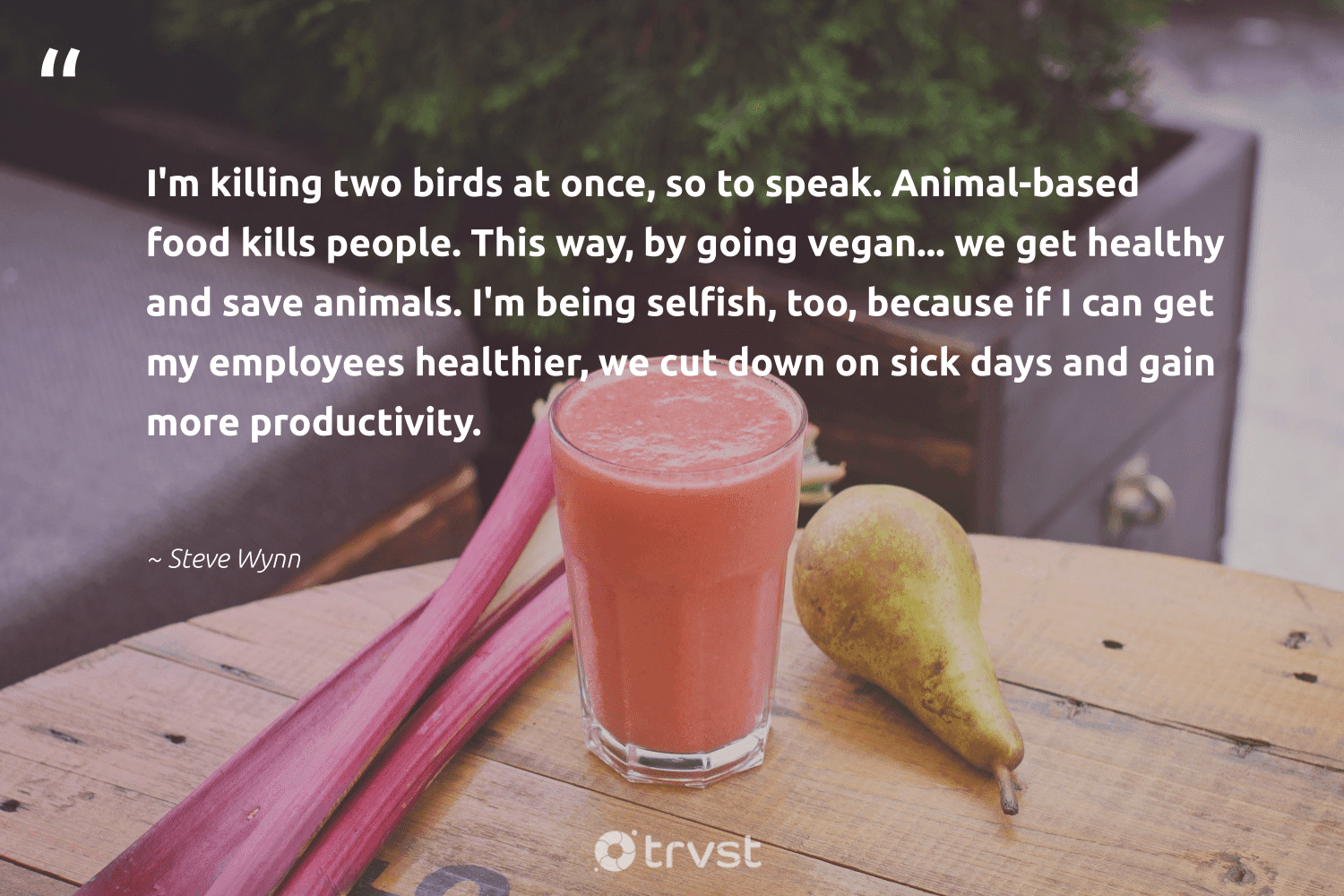 """""""I'm killing two birds at once, so to speak. Animal-based food kills people. This way, by going vegan... we get healthy and save animals. I'm being selfish, too, because if I can get my employees healthier, we cut down on sick days and gain more productivity.""""  - Steve Wynn #trvst #quotes #birds #animals #animal #food #healthy #productivity #vegan #wildlife #animallovers #sustainable"""