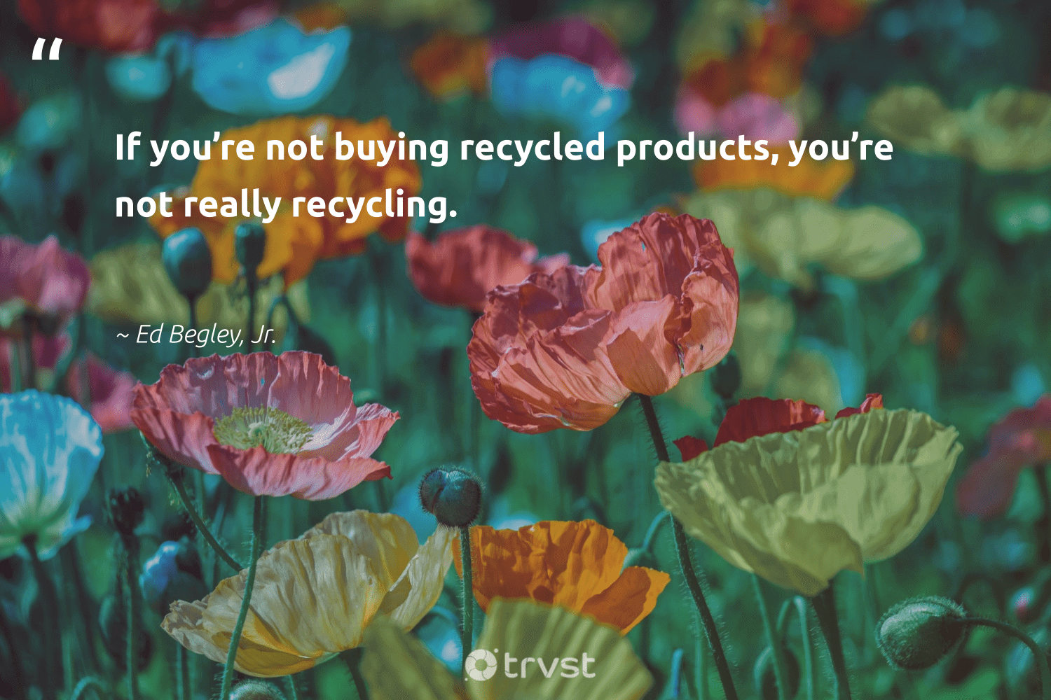 """""""If you're not buying recycled products, you're not really recycling.""""  - Ed Begley, Jr. #trvst #quotes #recycling #recycled #recycle #reducereuserecycle #wastefree #waronwaste #impact #repair #refurbished #ecoactivism"""
