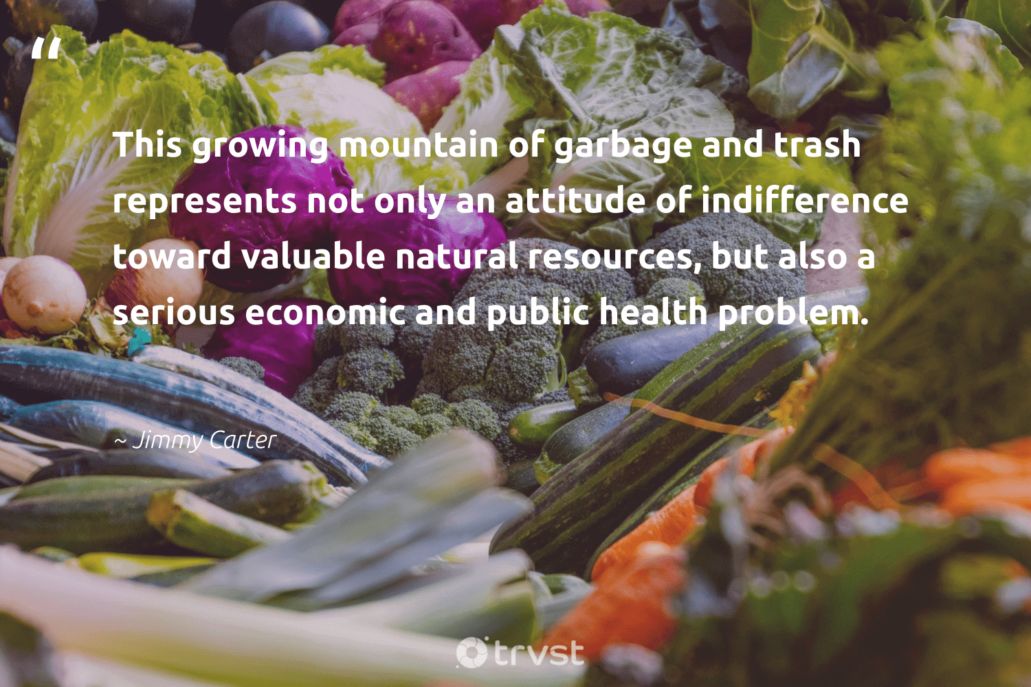 """""""This growing mountain of garbage and trash represents not only an attitude of indifference toward valuable natural resources, but also a serious economic and public health problem.""""  - Jimmy Carter #trvst #quotes #trash #garbage #mountain #natural #health #healthyliving #wastenotwantnot #mindset #gogreen #wellbeing"""