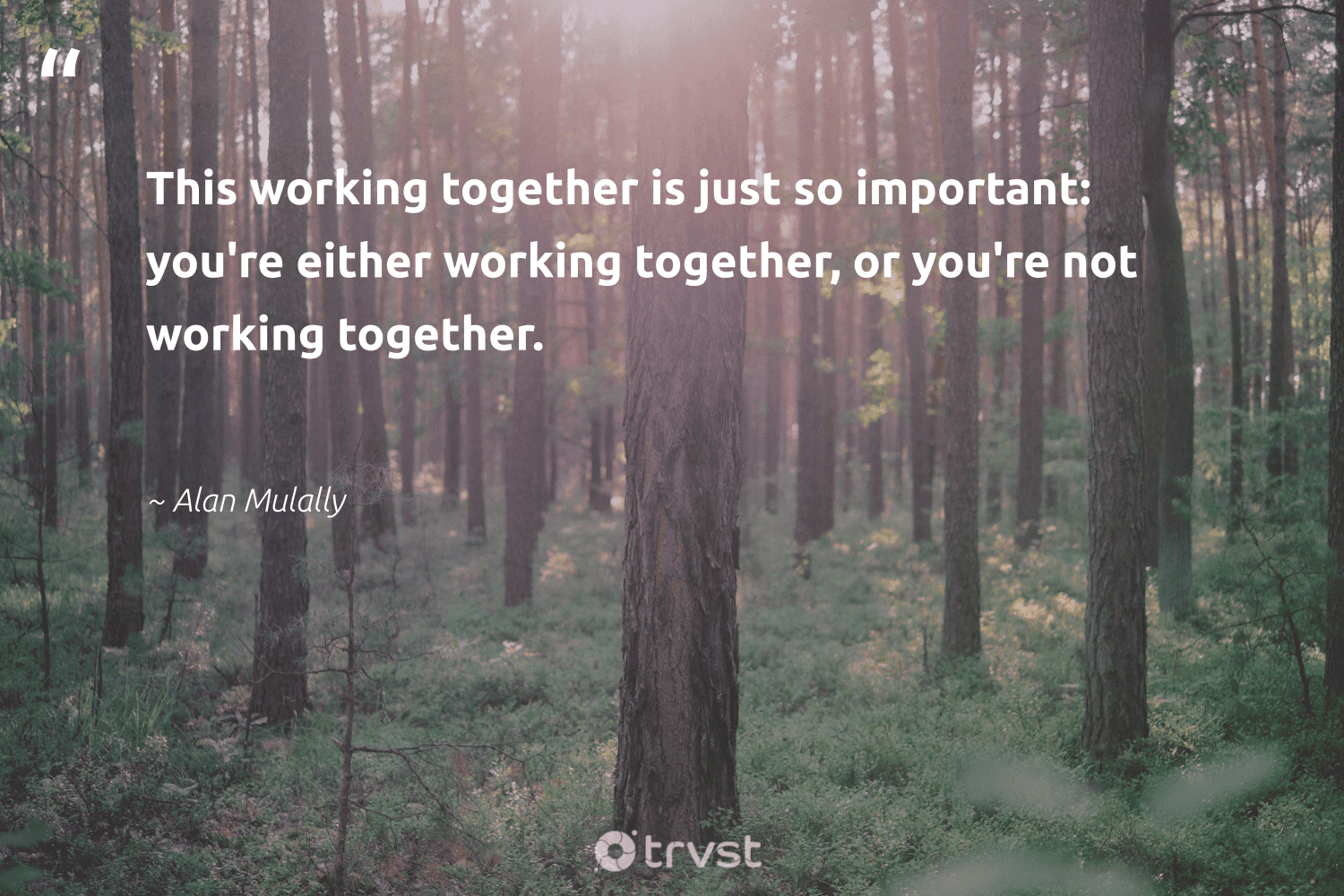 """""""This working together is just so important: you're either working together, or you're not working together.""""  - Alan Mulally #trvst #quotes #workingtogether #futureofwork #collectiveaction #softskills #bethechange #nevergiveup #socialimpact #begreat #changetheworld #takeaction"""