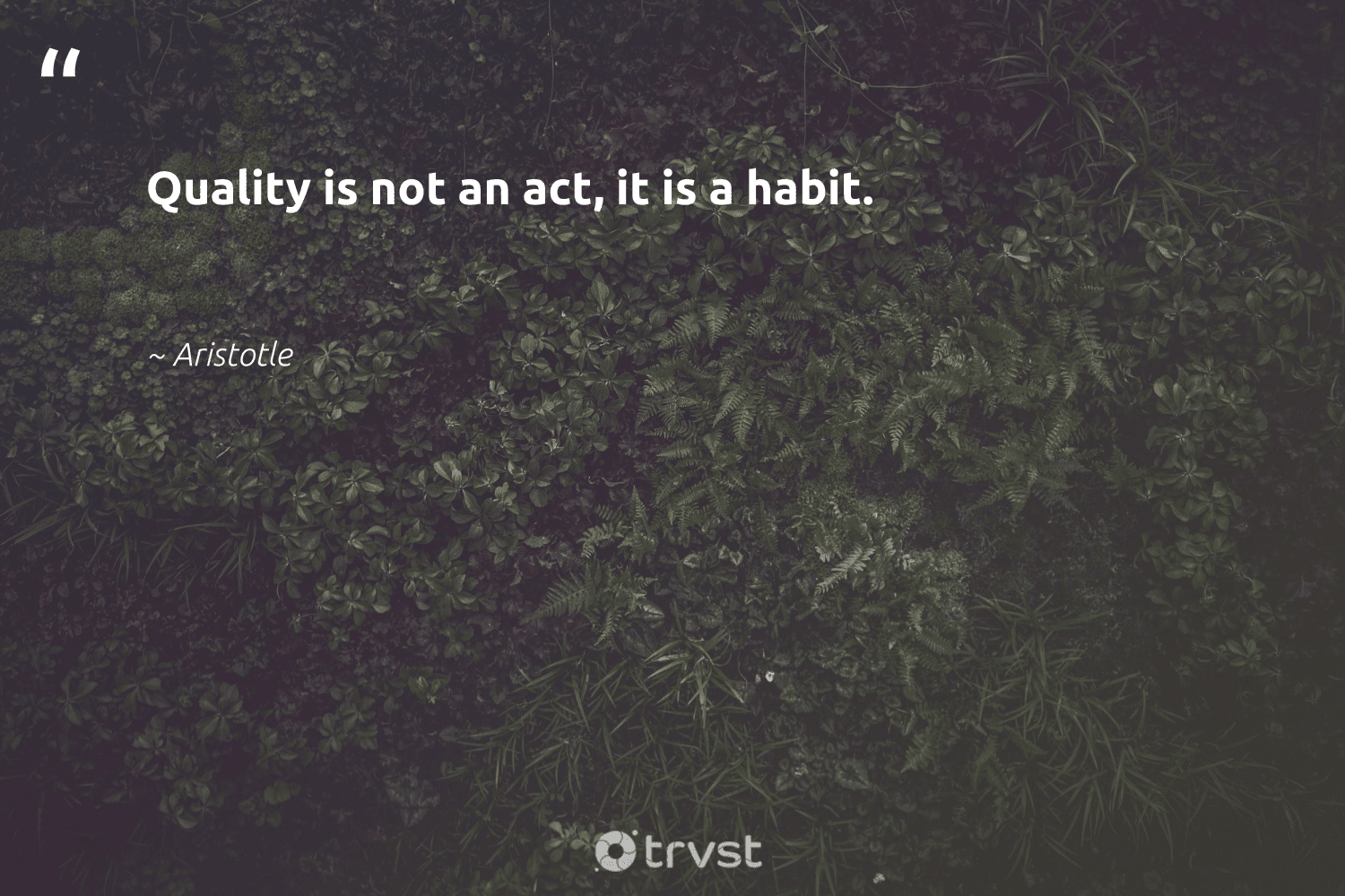 """""""Quality is not an act, it is a habit.""""  - Aristotle #trvst #quotes #softskills #socialimpact #begreat #bethechange #nevergiveup #dosomething #futureofwork #gogreen #dogood #takeaction"""