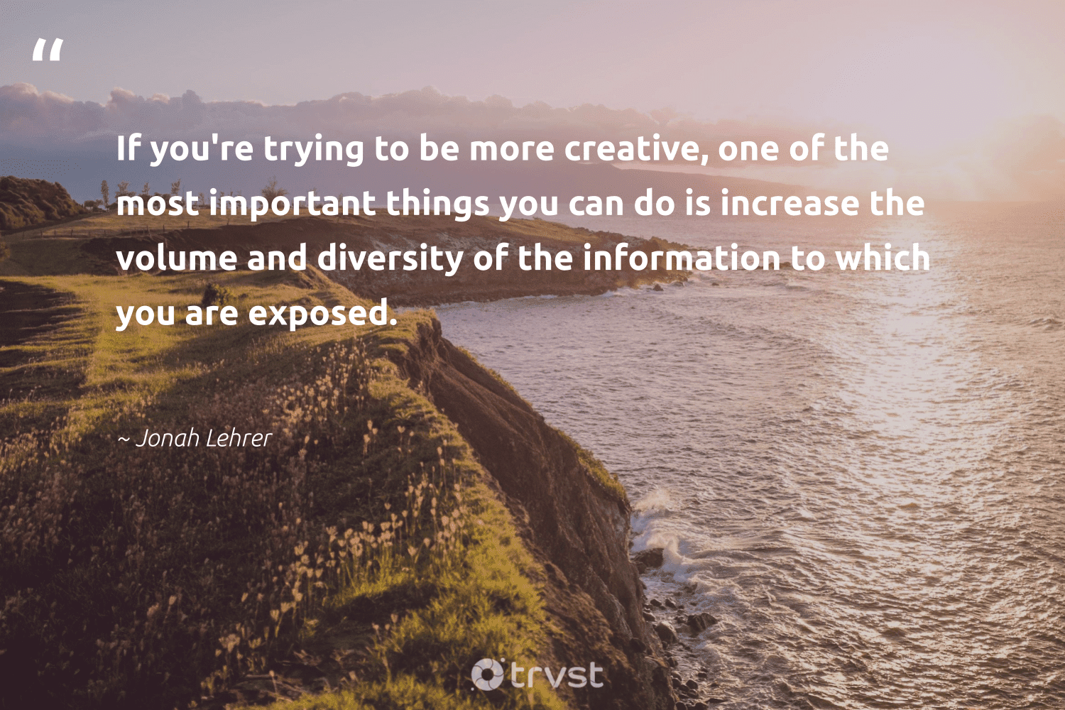 """""""If you're trying to be more creative, one of the most important things you can do is increase the volume and diversity of the information to which you are exposed.""""  - Jonah Lehrer #trvst #quotes #diversity #creative #representationmatters #discrimination #nevergiveup #weareallone #dosomething #inclusion #futureofwork #makeadifference"""