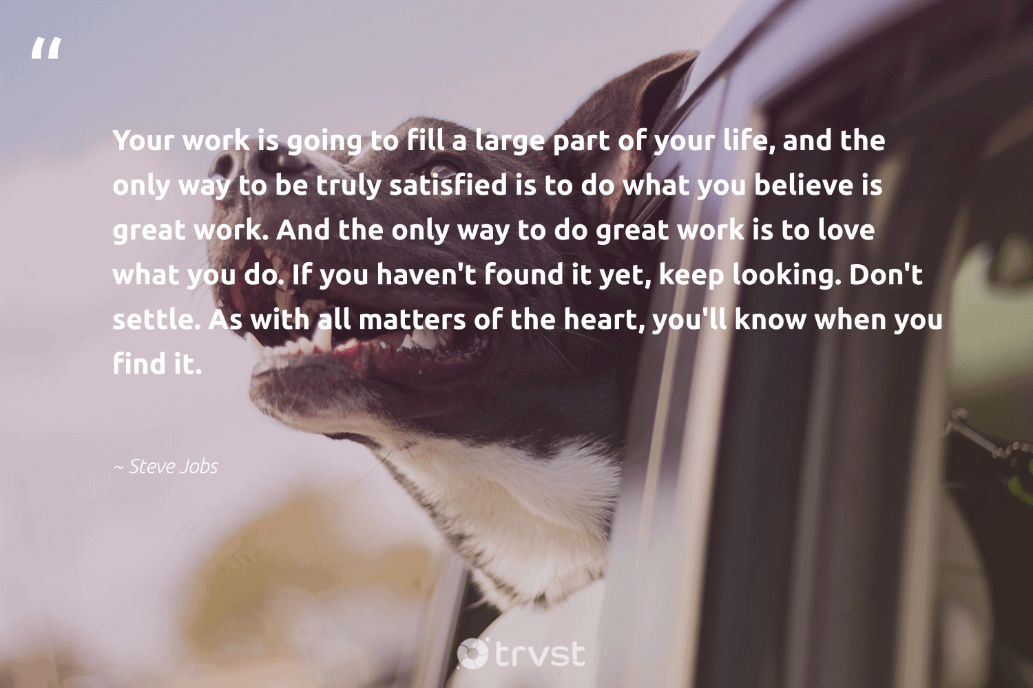 """""""Your work is going to fill a large part of your life, and the only way to be truly satisfied is to do what you believe is great work. And the only way to do great work is to love what you do. If you haven't found it yet, keep looking. Don't settle. As with all matters of the heart, you'll know when you find it.""""  - Steve Jobs #trvst #quotes #love #begreat #gogreen #futureofwork #socialimpact #nevergiveup #ecoconscious #softskills #thinkgreen #dotherightthing"""