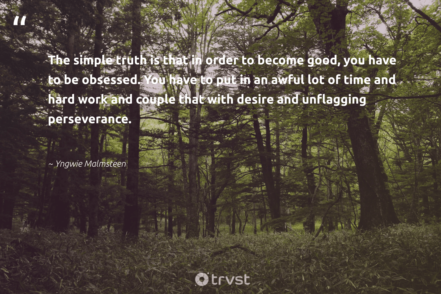 """""""The simple truth is that in order to become good, you have to be obsessed. You have to put in an awful lot of time and hard work and couple that with desire and unflagging perseverance.""""  - Yngwie Malmsteen #trvst #quotes #truth #nevergiveup #dosomething #futureofwork #changetheworld #softskills #dotherightthing #begreat #planetearthfirst #takeaction"""