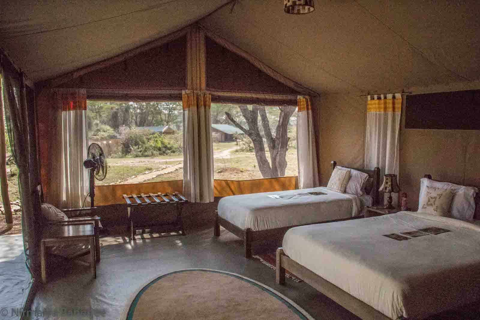 Porini Cheetah Camp Guest Tent